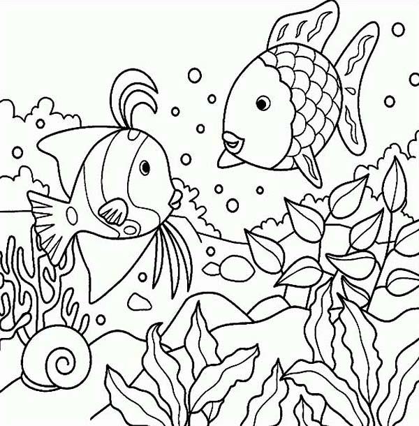 600x610 Free Rainbow Fish Sea Animals Coloring Page