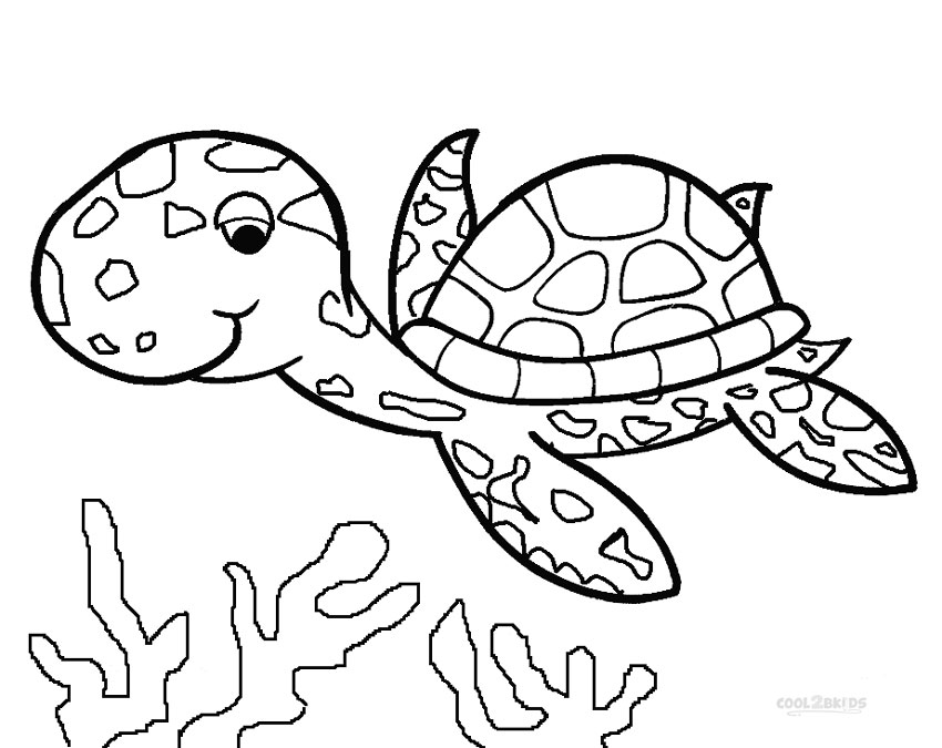 850x675 Printable Sea Turtle Coloring Pages For Kids