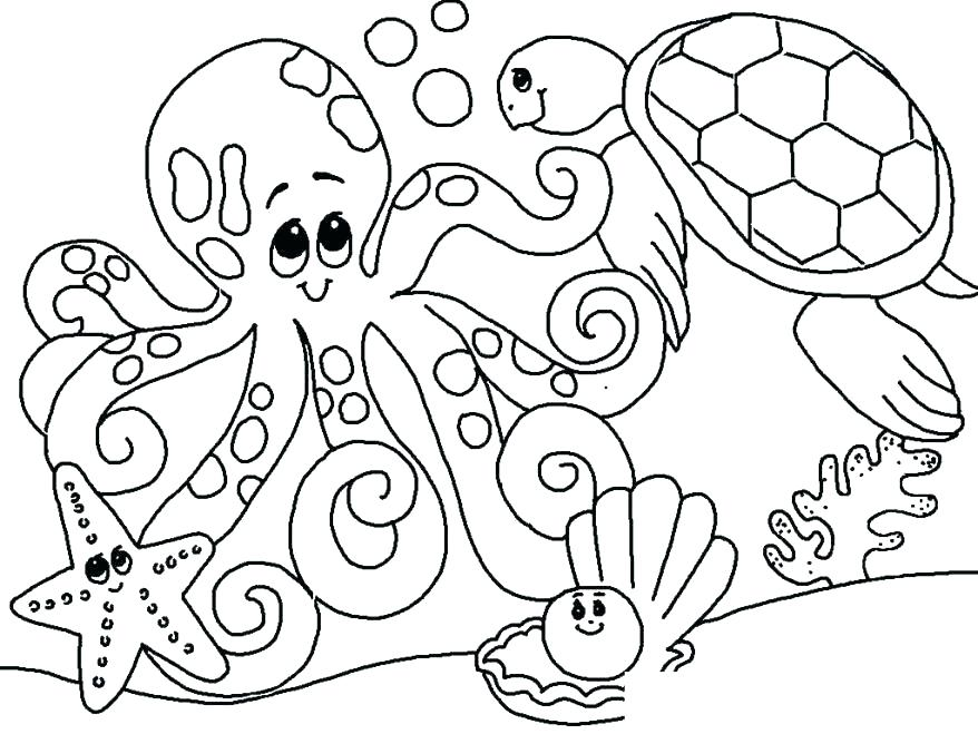 878x659 Sea Coloring Pages Sea Shell Coloring Page Under Sea Coloring