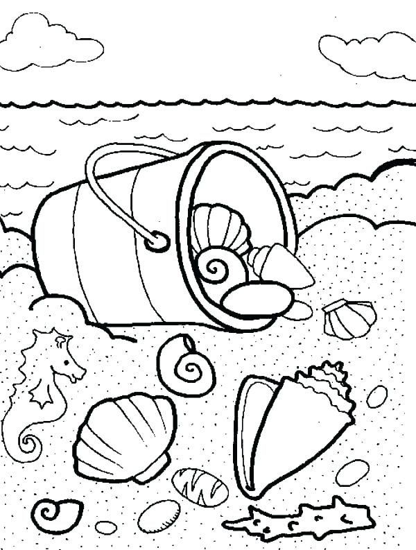 600x793 Sea Shell Coloring Page Seashell Coloring Pages Sea Shells