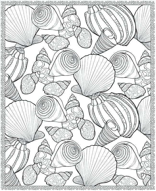 650x796 Seashell Coloring Page Sea Shells Coloring Pages Seashells
