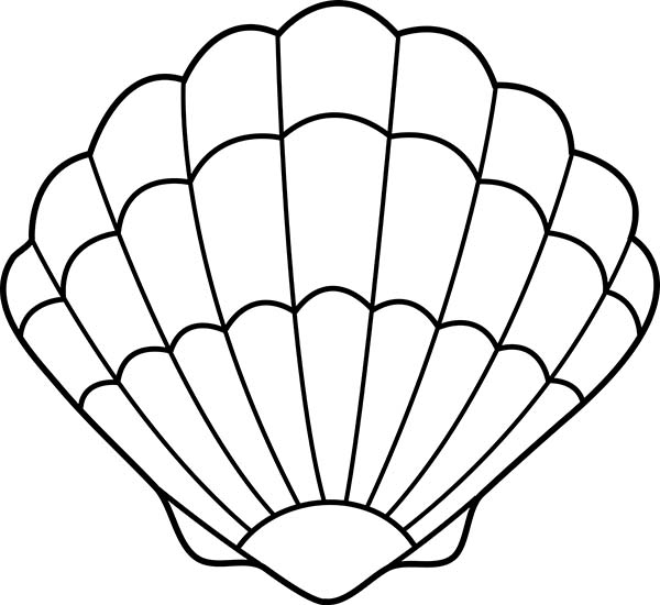 600x550 Seashell Coloring Pages