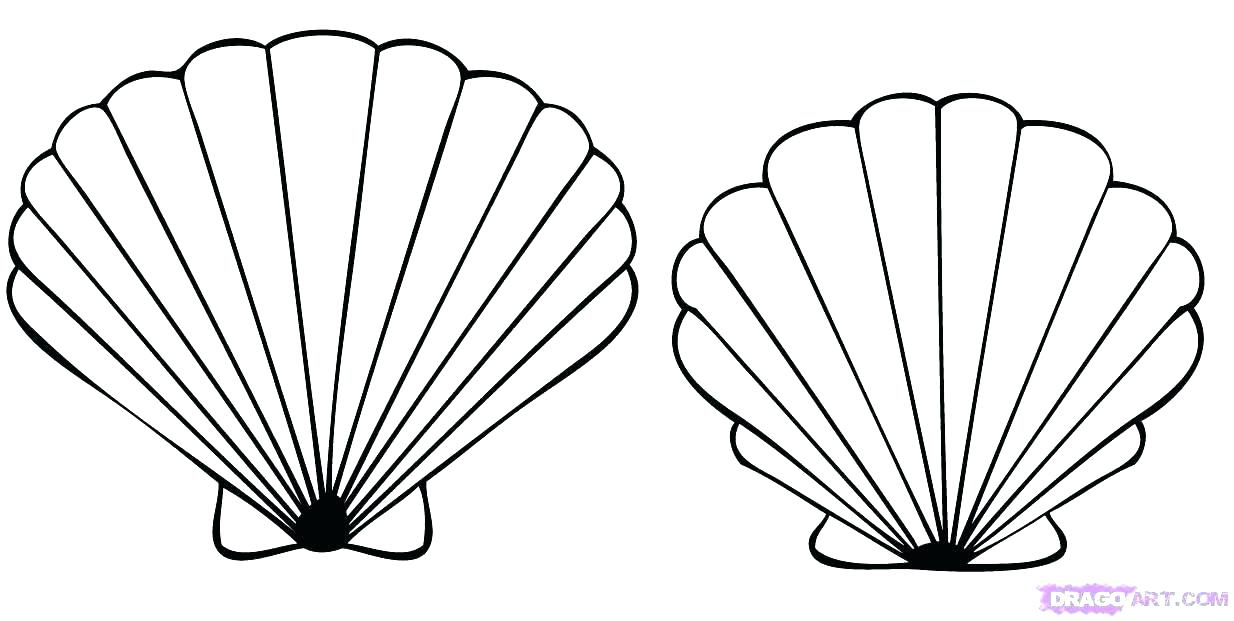 1234x621 Seashells Coloring Page Three Shells Coloring Page Printable