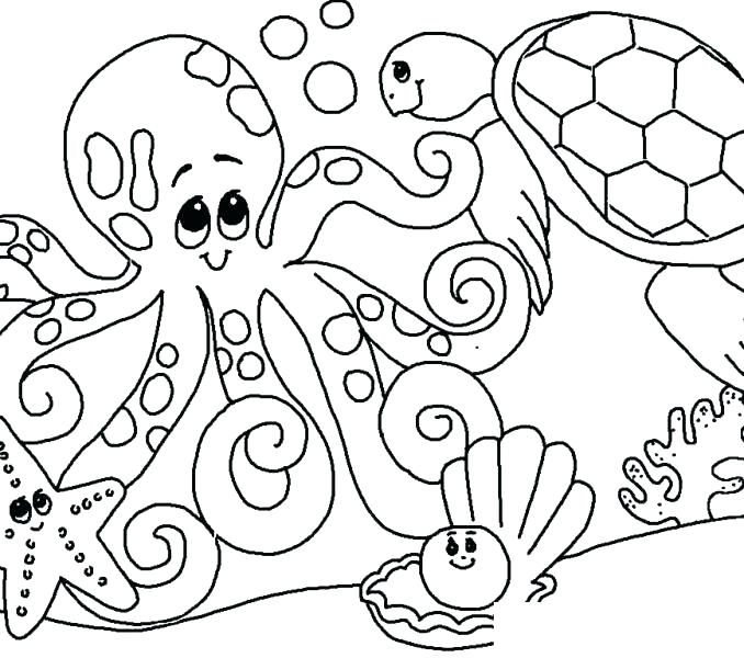 678x600 Seaweed Colouring Sheets Under Sea Coloring Pages Under