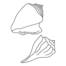 230x230 Top Free Printable Shell Coloring Pages Online