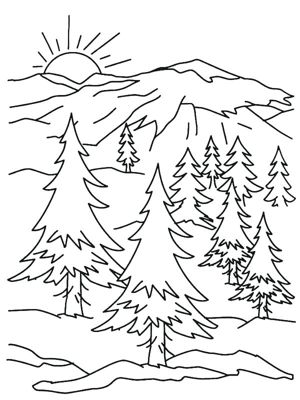 600x800 Coloring Pages For Kids Cars Mountain Goat Sketch Color