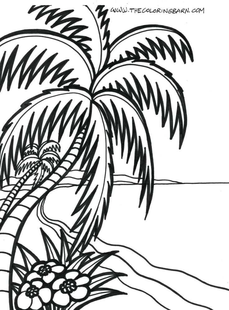 736x996 Beach Coloring Pages For Adults Beach Sunrise Coloring Page