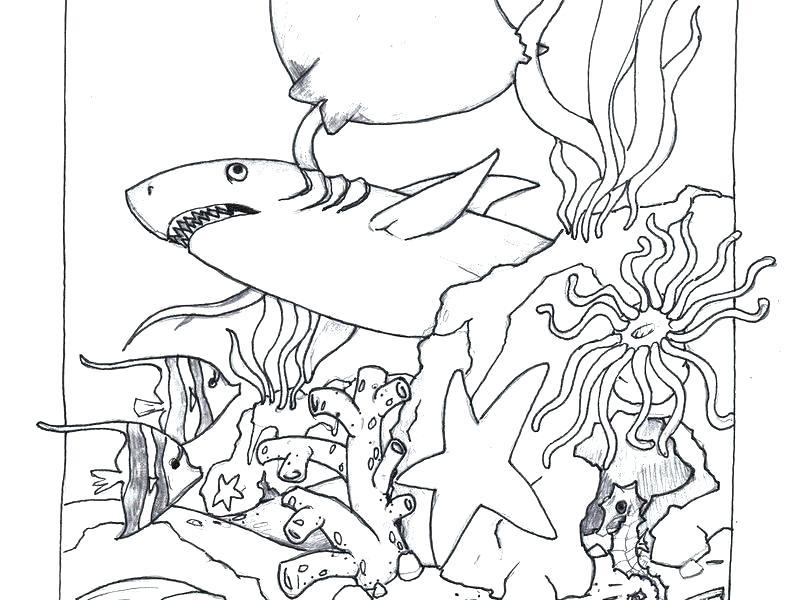 785x600 Beach Scene Coloring Page Ocean Scene Coloring Page Ocean Scenes