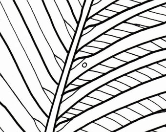 340x270 Beach Sunrise Coloring Page Embroidery Pattern Beach Art