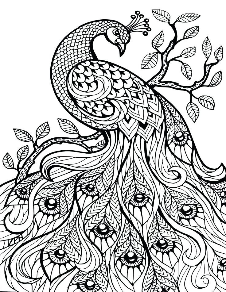 Coloring Pages To Color Online For Free
