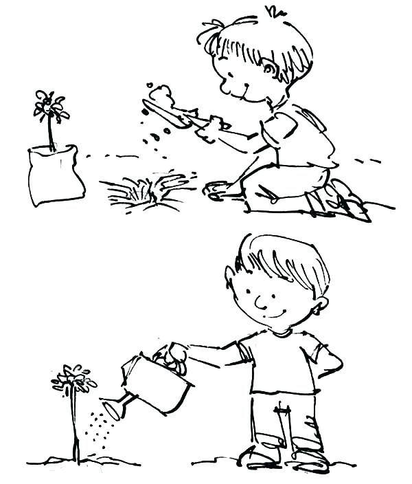 600x704 Plants Coloring Page Coloring Pages Trees Plants And Flowers As