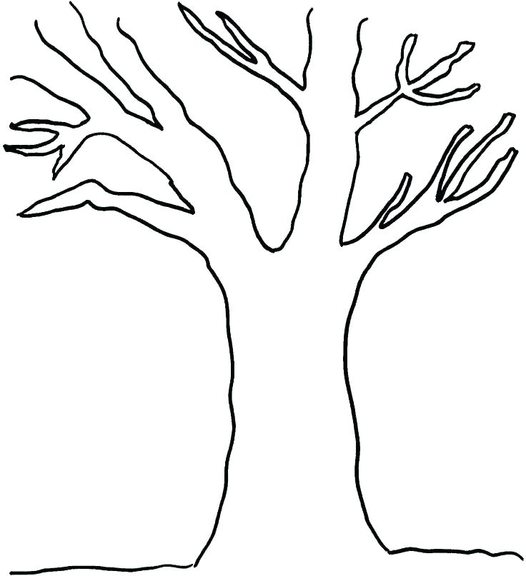 736x807 Trees Coloring Pages Coloring Pages Trees Plants Flowers