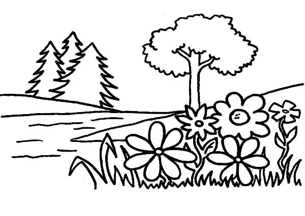 600x426 Coloring Pages Of Trees Plants Flowers Coloring Page