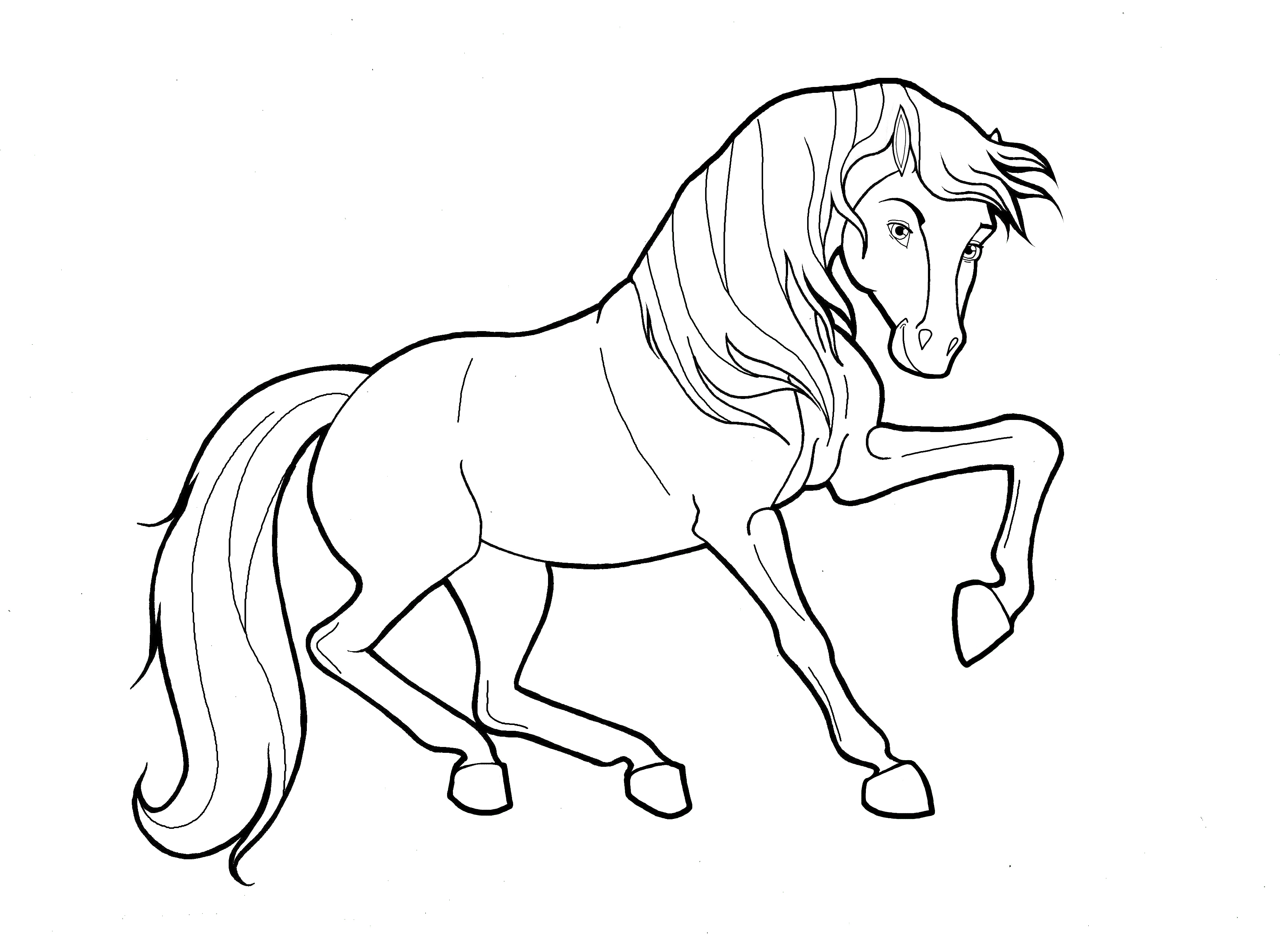 Coloring Pages Wild Horses