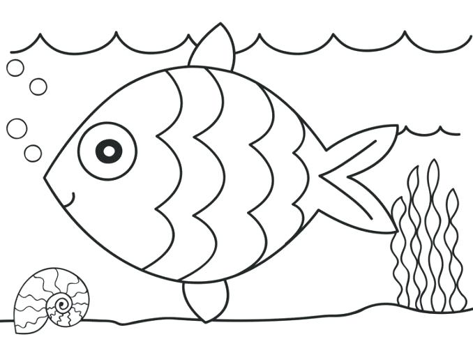 678x496 Worksheet Coloring Pages