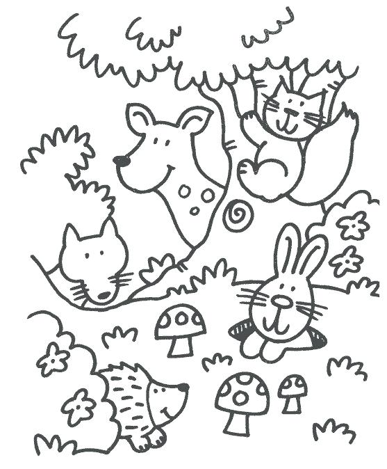 557x674 Coloring Animal Forest Animals Coloring Pages Animal Coloring