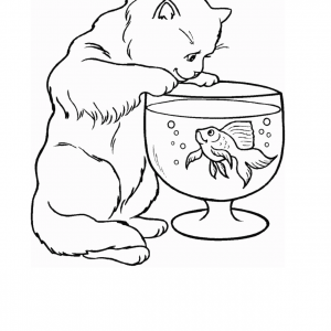 300x300 Coloring Page Template Printing Lf Adult