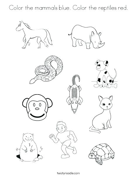 468x605 Red Coloring Pages Preschoolers Kids Coloring Reptiles Coloring