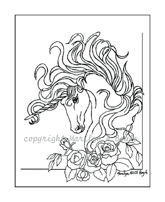 570x698 Loon Coloring Page Loon Coloring Page Blacknd White Drawing
