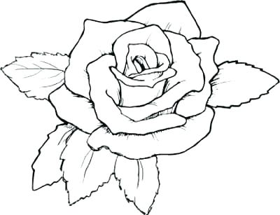 400x307 Compass Rose Coloring Page Rose For Coloring Printable Roses