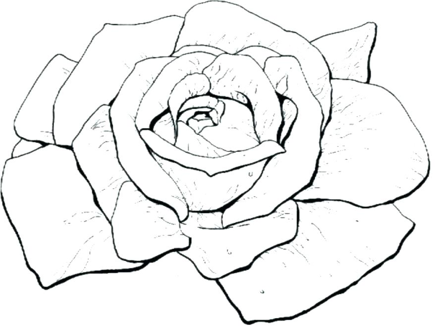 878x659 Marvellous Compass Rose Coloring Page Marvellous Compass Rose