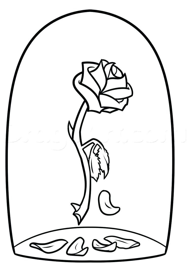 736x1055 Marvellous Compass Rose Coloring Page Rose Coloring Pages Full