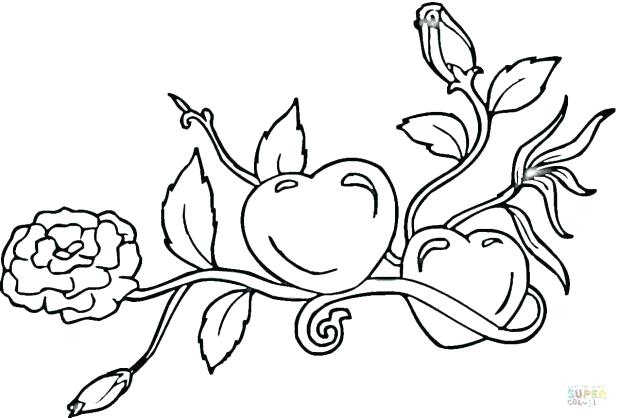 618x418 Roses Coloring Pages Click The Hearts And Roses Coloring Pages