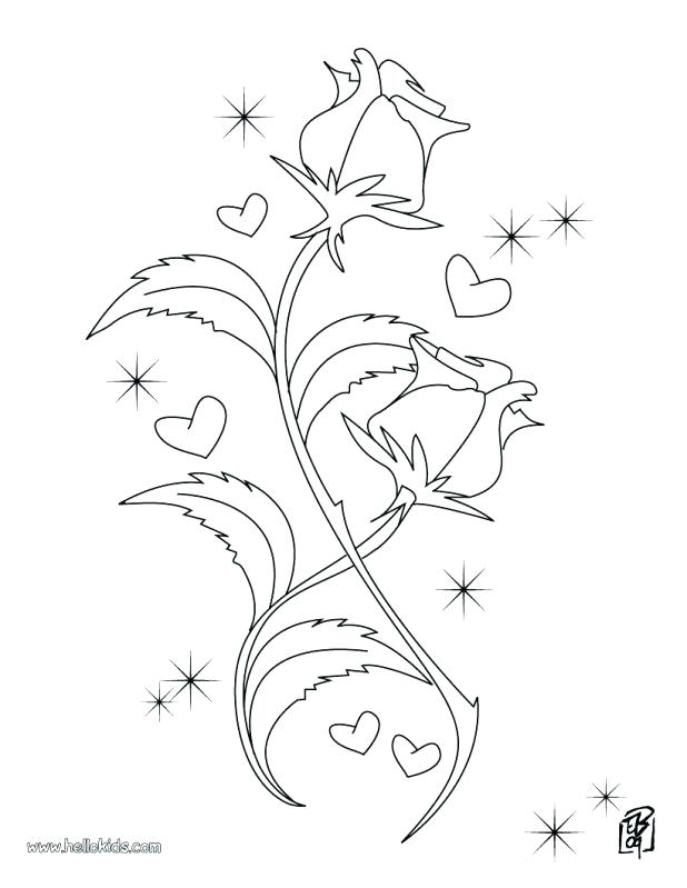 618x799 Marvellous Compass Rose Coloring Page Usedauto Club