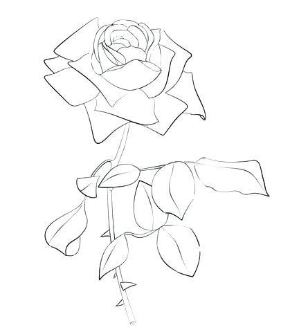 406x480 Compass Rose Coloring Page Coloring Page Rose Click To See