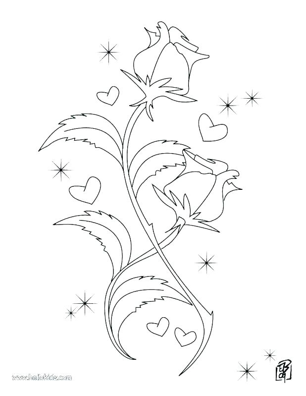 618x799 Compass Rose Coloring Page Compass Rose Coloring Page Roses