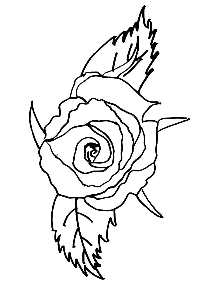 720x936 Marvellous Compass Rose Coloring Page Coloring Page Rose New Rose