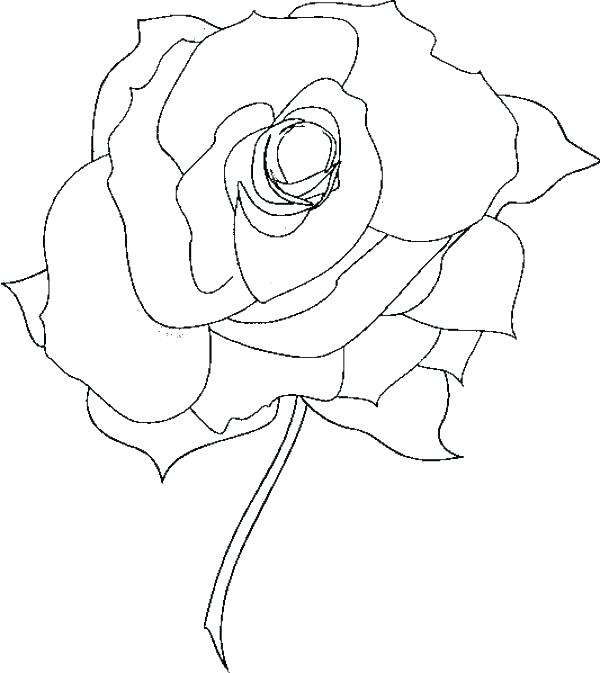 600x673 Marvellous Compass Rose Coloring Page Rose Color Pages Printable