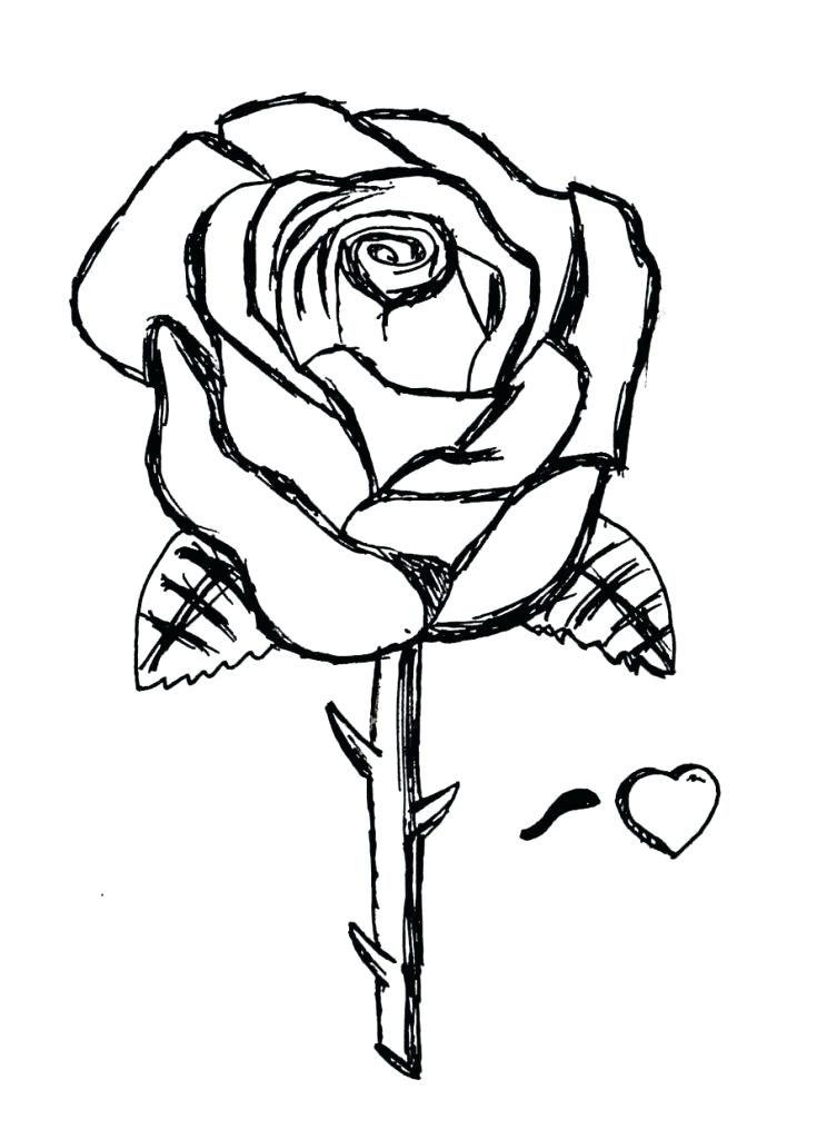 744x1024 Coloring Pages Rose Coloring Pages Of A Rose Compass Rose Coloring