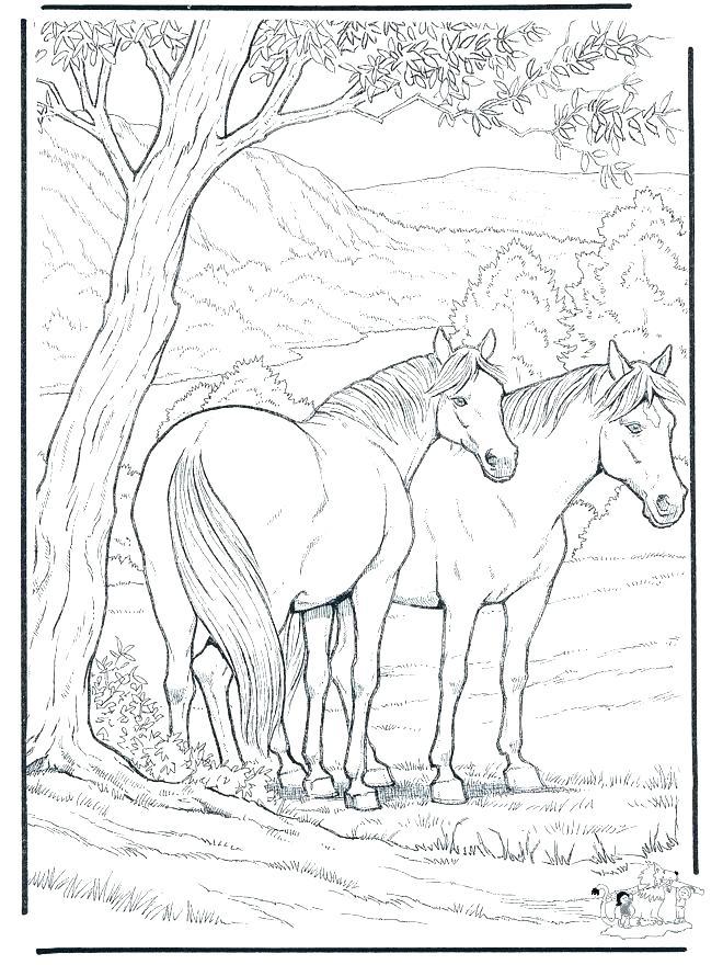 660x880 Hard Animal Coloring Pages Hard Animal Coloring Page Hard Animal
