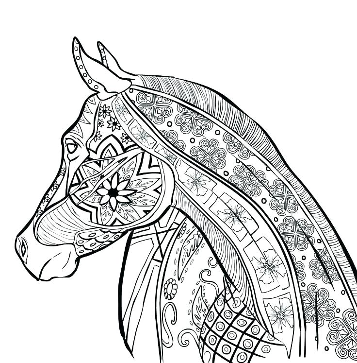 736x747 Hard Animal Coloring Pages Hard Coloring Pages Printable Hard