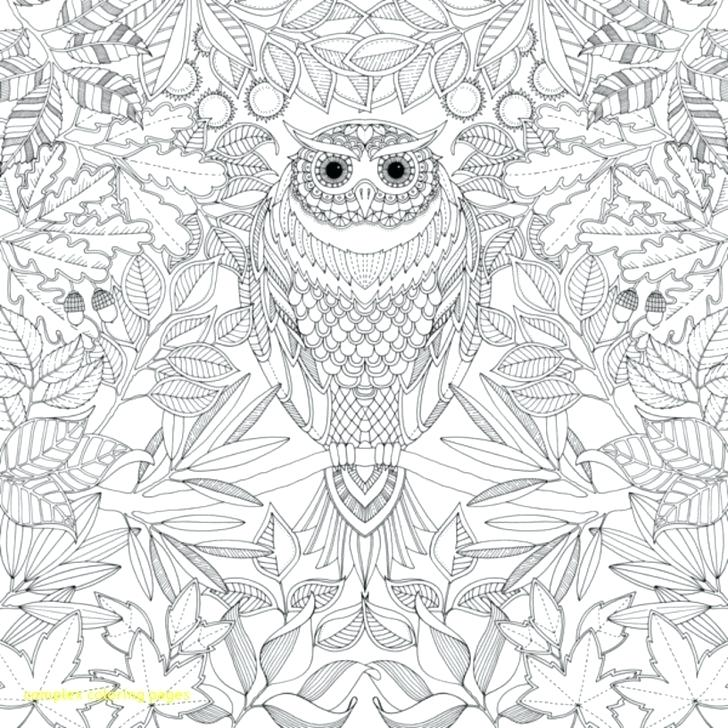 728x728 Printable Complex Mandala Coloring Pages The Sun Free For Adults