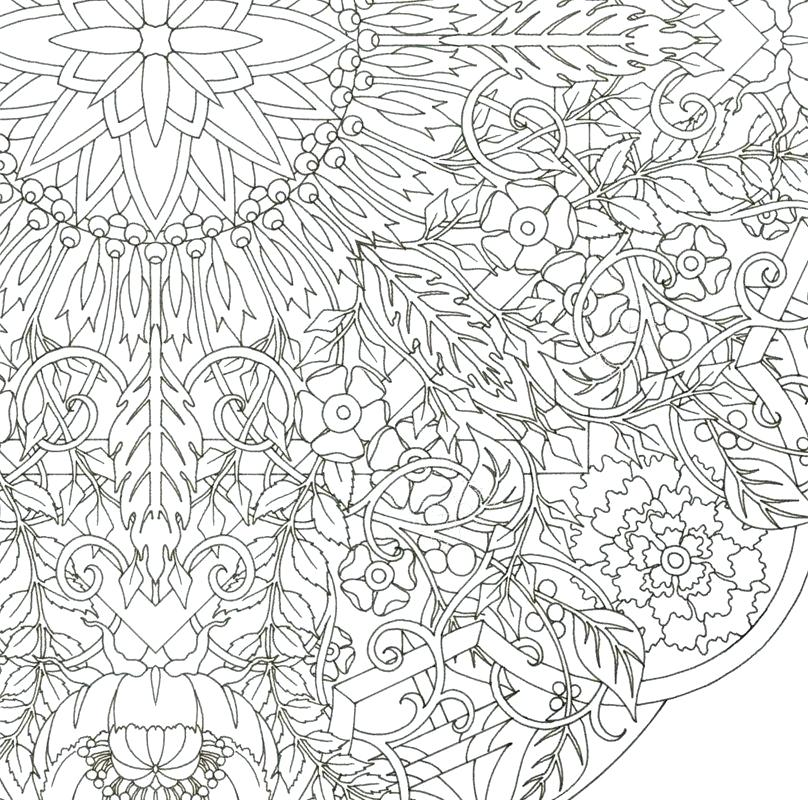 808x800 Complex Coloring Pages For Adults Com Coloring Pages Pictures