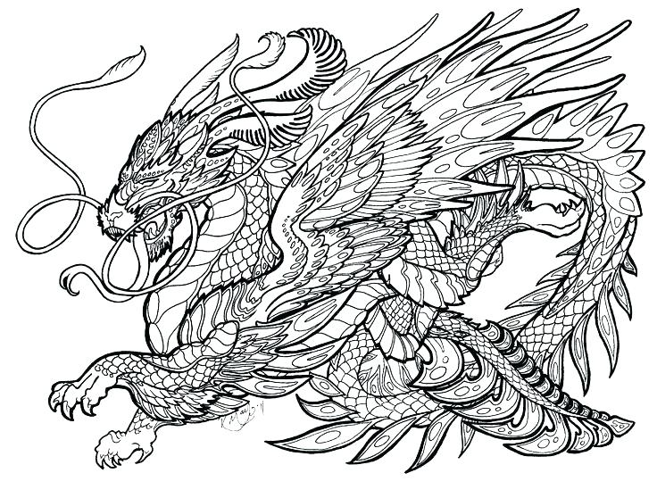 Dragons - Coloring Pages for Adults | 558x736