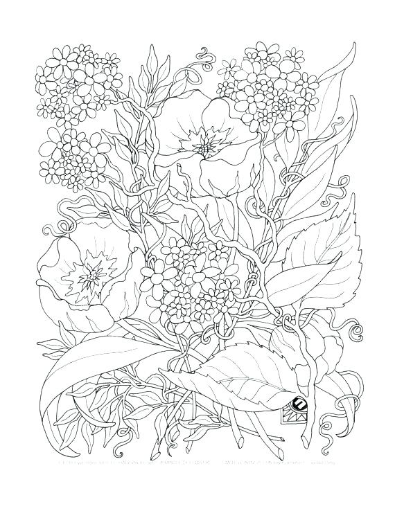 Complicated Flower Coloring Pages at GetDrawings.com | Free ...