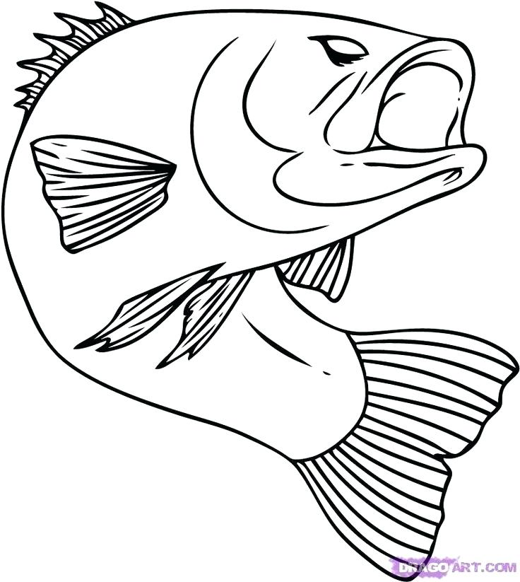 736x823 Computer Keyboard Colouring Page Kids Coloring Coloring Pages You