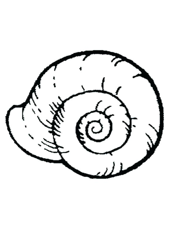 600x850 Shell Coloring Pages Sea Shell Coloring Pages Turtle Shell