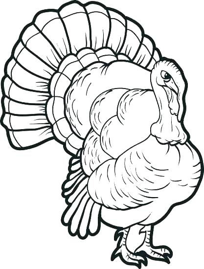 417x550 Turkey Coloring Sheets To Print Turkey Coloring Pages Free