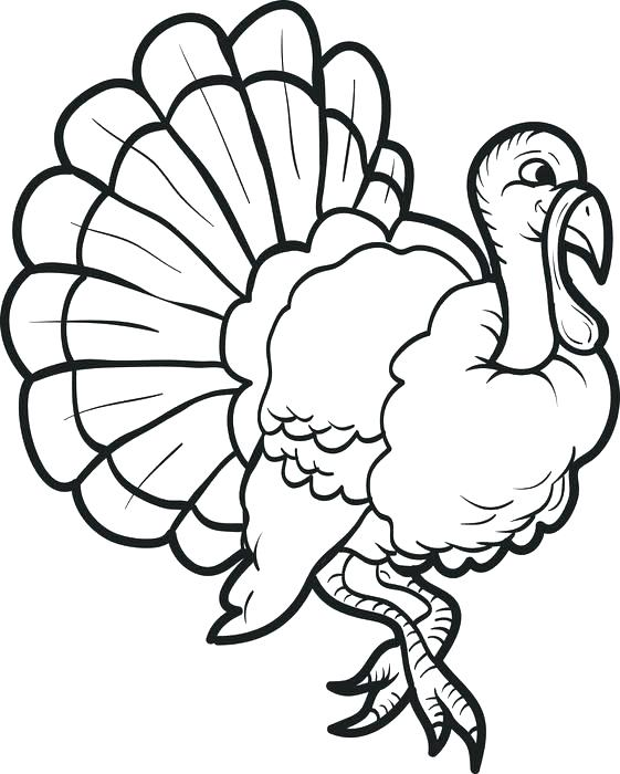 561x700 Coloring Page Turkey Free Printable Thanksgiving Turkey Coloring