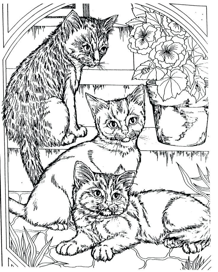 736x916 Free Coloring Pages Teenagers Unique Free Coloring Pages