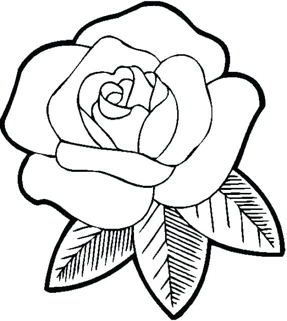 572x639 Cool Flower Coloring Pages Easy Coloring Pages Of Flowers Cool