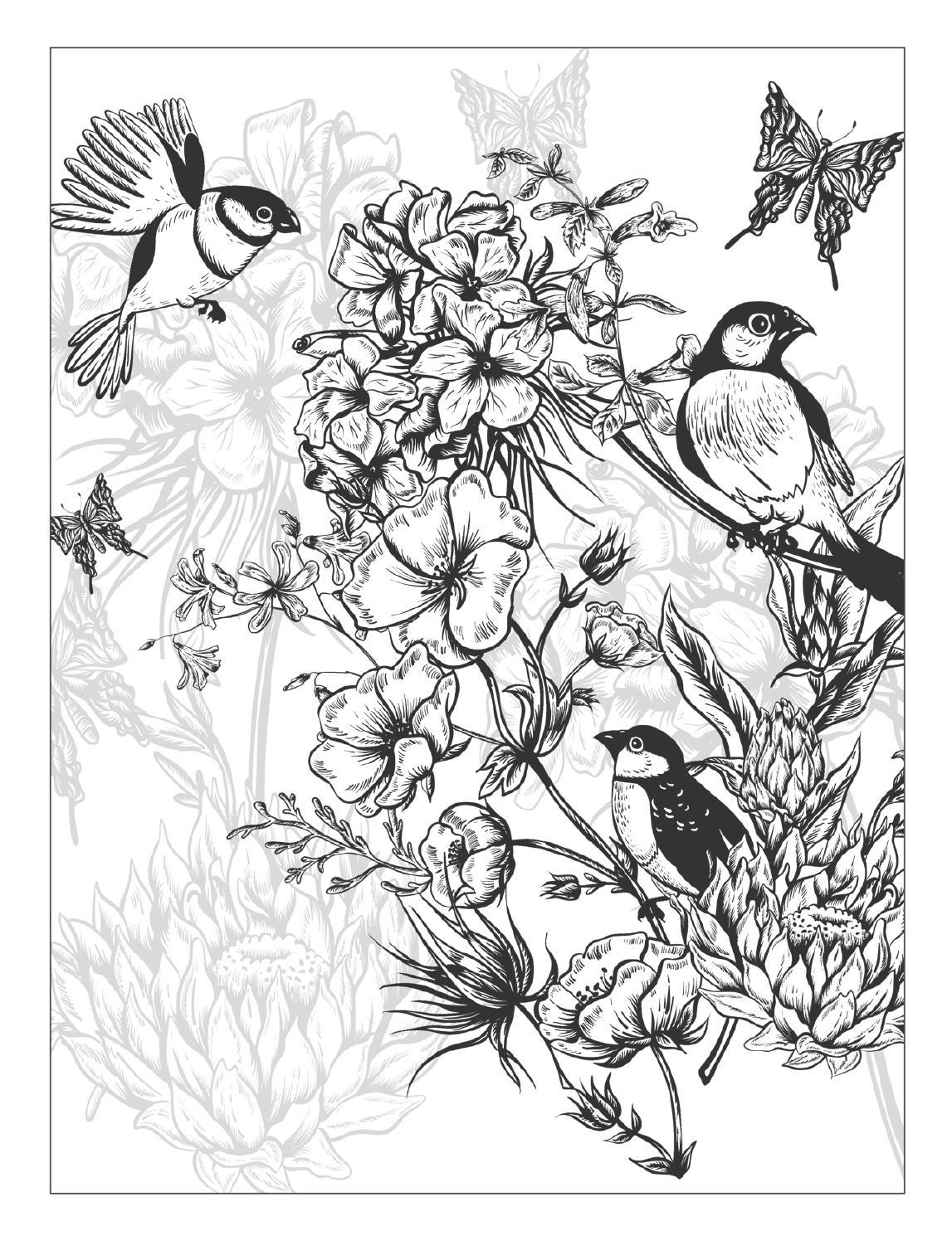 1147x1496 Cool Beautiful Flowers Detailed Floral Designs Coloring Book