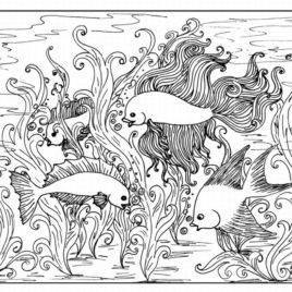 268x268 Printable Coloring Pages For Older Kids Give The Best Coloring