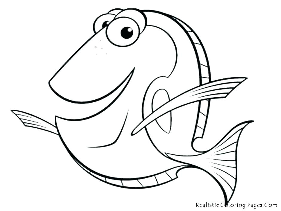 940x705 Coral Reef Coloring Sheet Coral Reef Coloring Page Pages Sheet