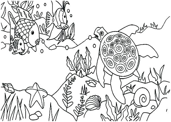 600x429 Coral Reef Coloring Page Coral Reef Coloring Page Coral Reef Fish