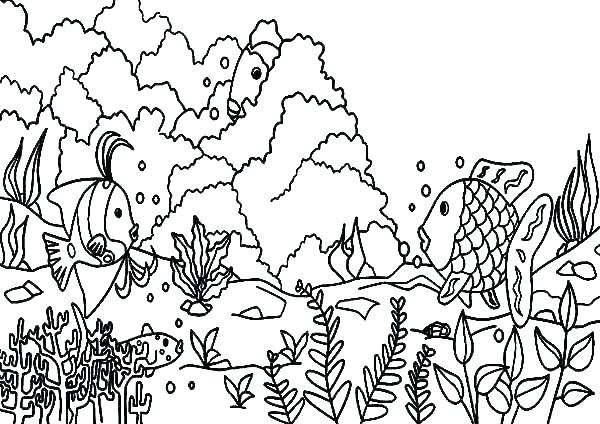 600x424 Coral Reef Coloring Pages Coral Reef Fish Coloring Pages Lawman Site